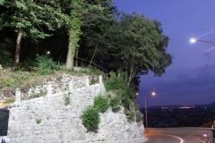 castellana_2011_17
